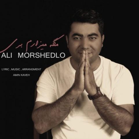 دانلود آهنگ جدید مگه میزارم بری علی مرشدلو