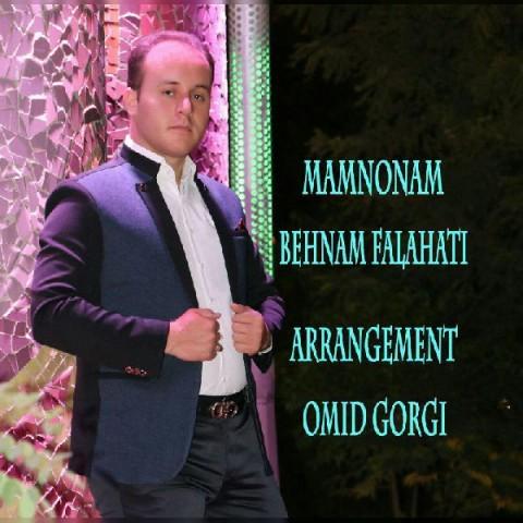 دانلود آهنگ جدید ممنونم بهنام فلاحتی