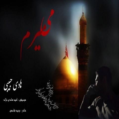 دانلود آهنگ جدید میمیرم هادی حبیبی