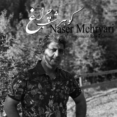 دانلود آهنگ جدید گوهر شب چراغ ناصر مهریاری