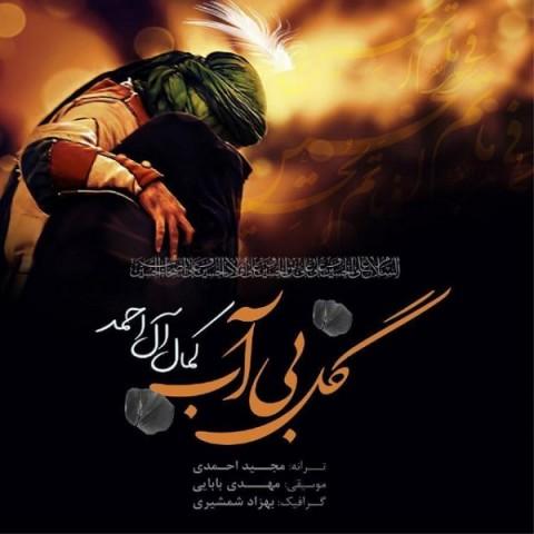 دانلود آهنگ جدید گل بی آب کمال آل احمد