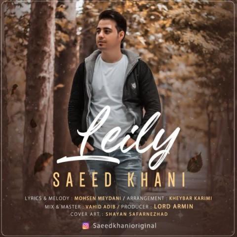 دانلود آهنگ جدید لیلی سعید خانی