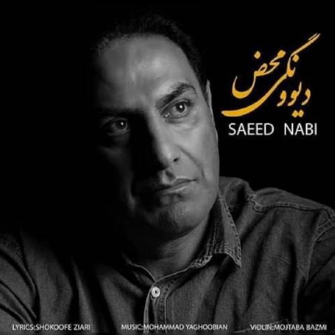 دانلود آهنگ جدید دیوونگی محض سعید نبی