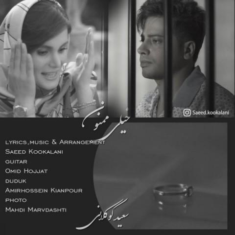 دانلود آهنگ جدید خیلی ممنون سعید کوکلانی