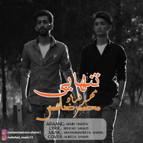 دانلود آهنگ جدید تنهایی محمد رضا شمس و مهرشاد