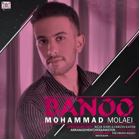 دانلود آهنگ جدید بانو محمد ملائی