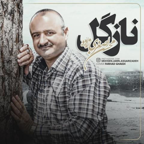 دانلود آهنگ جدید نازگل محسن اصغری زاده