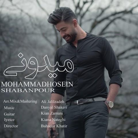 دانلود آهنگ جدید میدونی محمدحسین شعبانپور