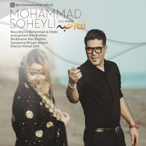 دانلود آهنگ جدید انا احبه محمد سهیلى
