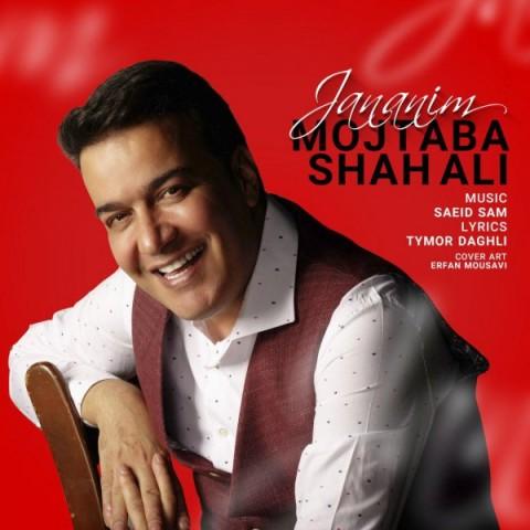 دانلود آهنگ جدید جانانیم مجتبی شاه علی