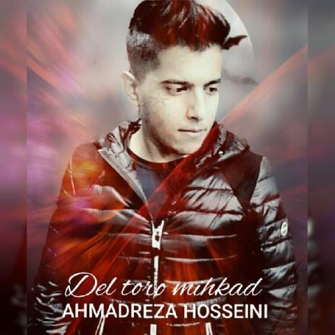 دانلود آهنگ جدید دل تورو میخواد احمدرضا حسینی