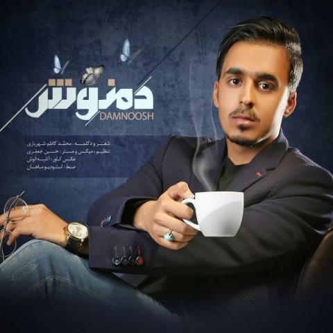 دانلود آهنگ جدید دمنوش محمد کاظم شهریاری