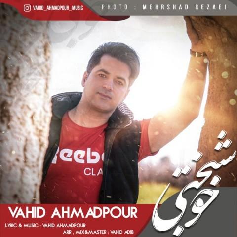 دانلود آهنگ جدید خوشبختی وحید احمدپور