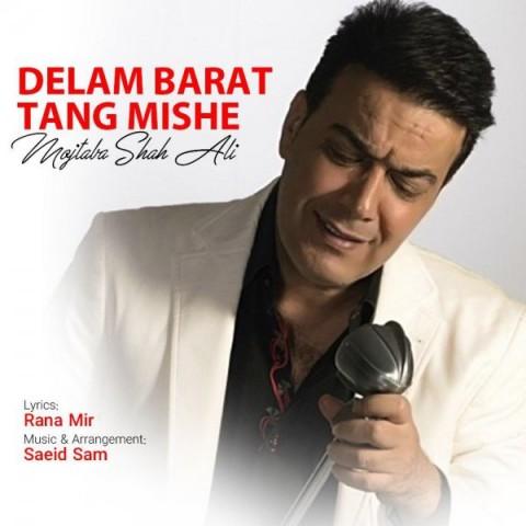 دانلود آهنگ جدید دلم برات تنگ میشه مجتبی شاه علی