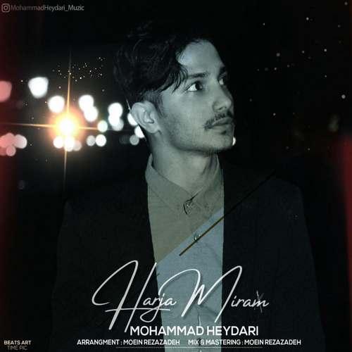 دانلود آهنگ جدید هرجا میرم محمد حیدری