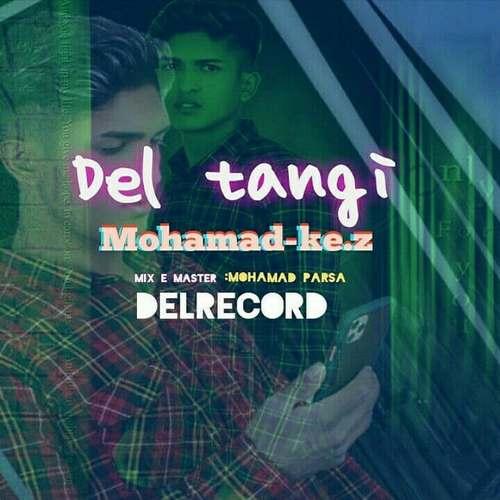 دانلود آهنگ جدید دلتنگی محمد کاظمی