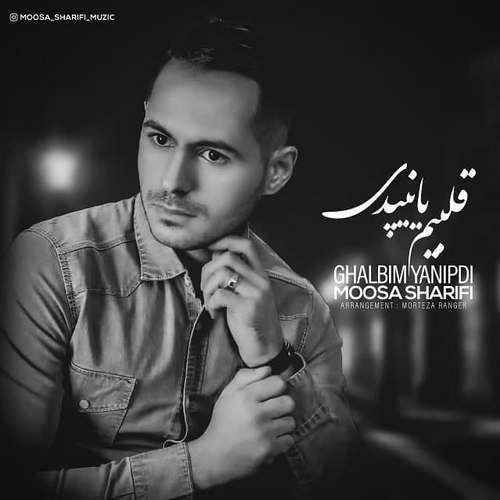 دانلود آهنگ جدید قلبیم یانیپدی موسی شریفی