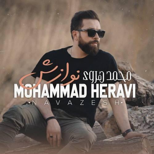 دانلود آهنگ جدید نوازش محمد هروی